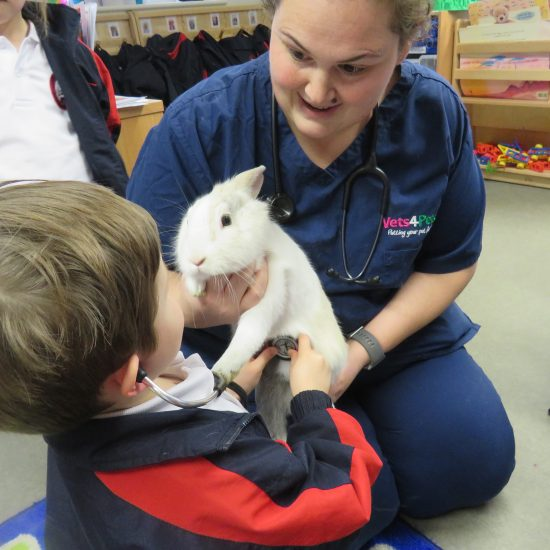 Learning how to give the rabbit a check-up