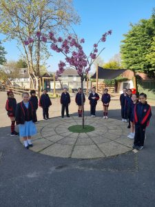 Year 4 Ready for Summer Term