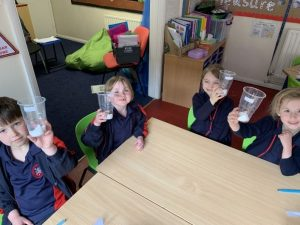 Year 1 observing the changes in a bean as it grows
