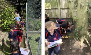 Year 1 on the hunt for minibeasts