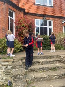 Year 2 Capturing Spring Flowers on Camera