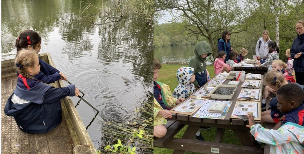 Pond Dipping with Nets