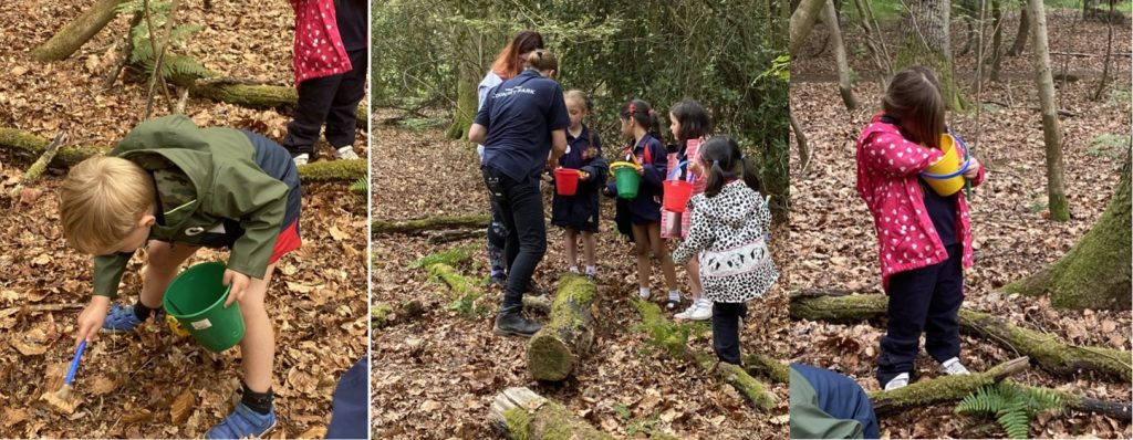 Reception Hunting for Living Creatures in the Woodlands