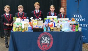 Our donations to Besom