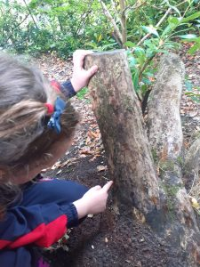 Searching for habitats